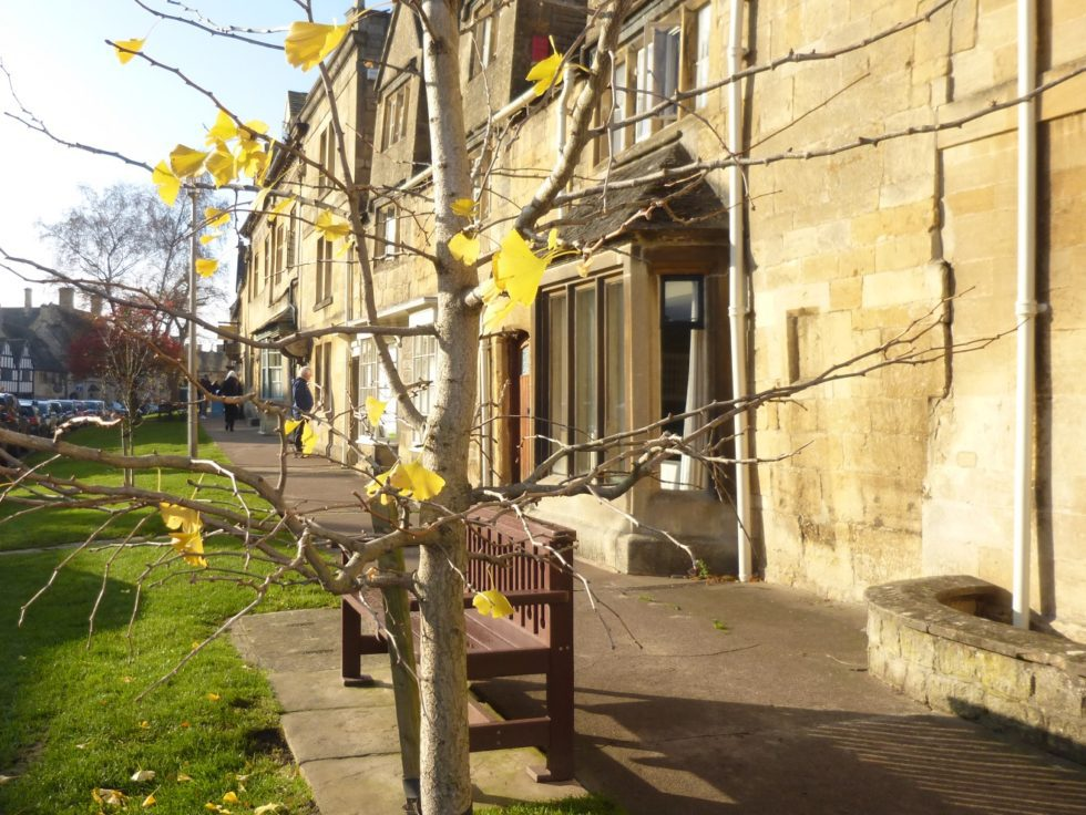 Chipping Campden Village