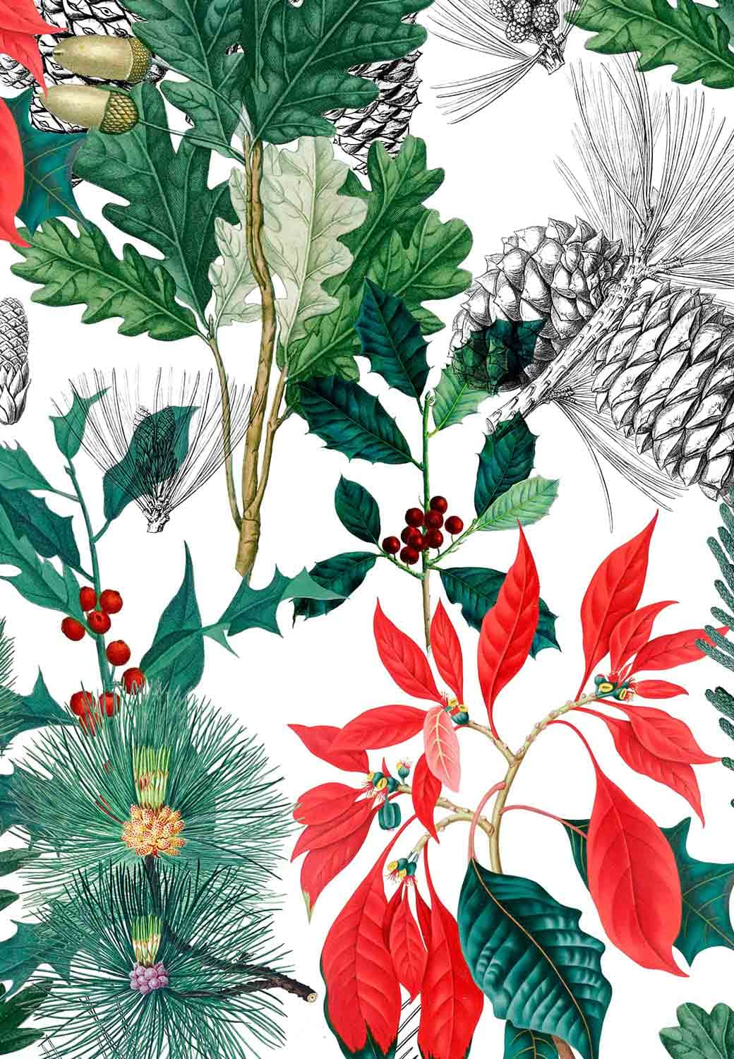Christmas brochure pattern with Eden Hotel Collection