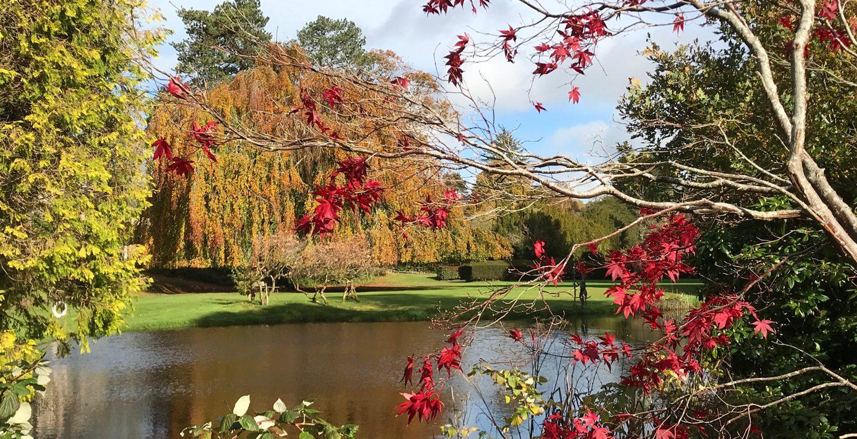 Bovey Castle Autumn